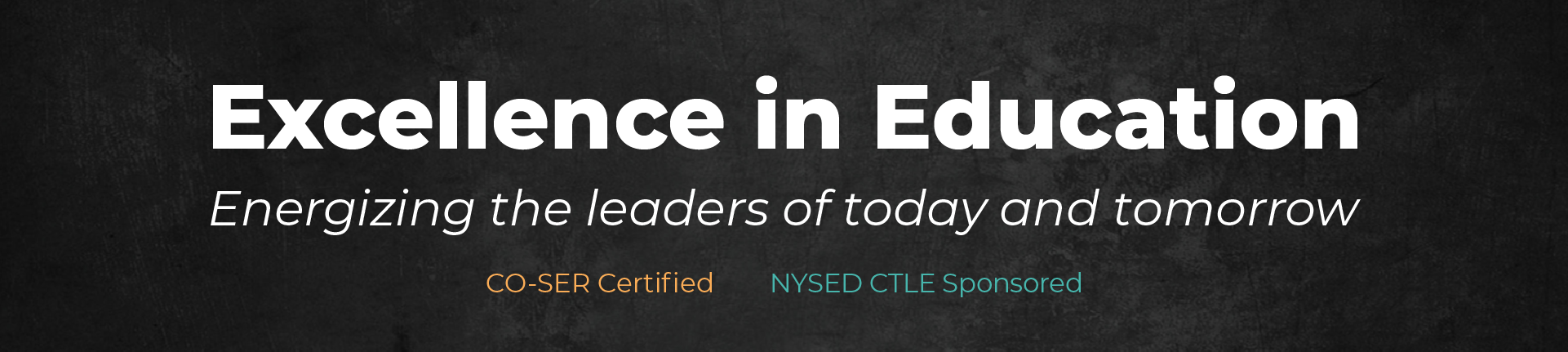 Daneli Partners Excellence in Education